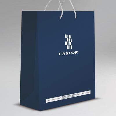 castor_5